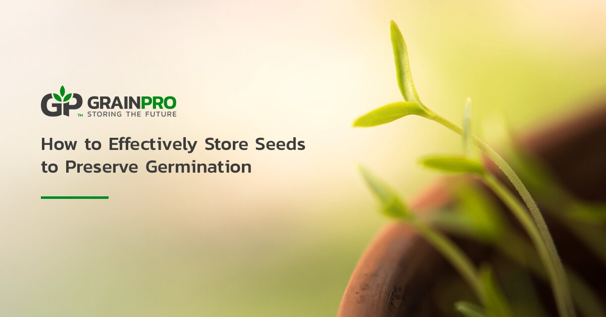 store seeds preserve germination