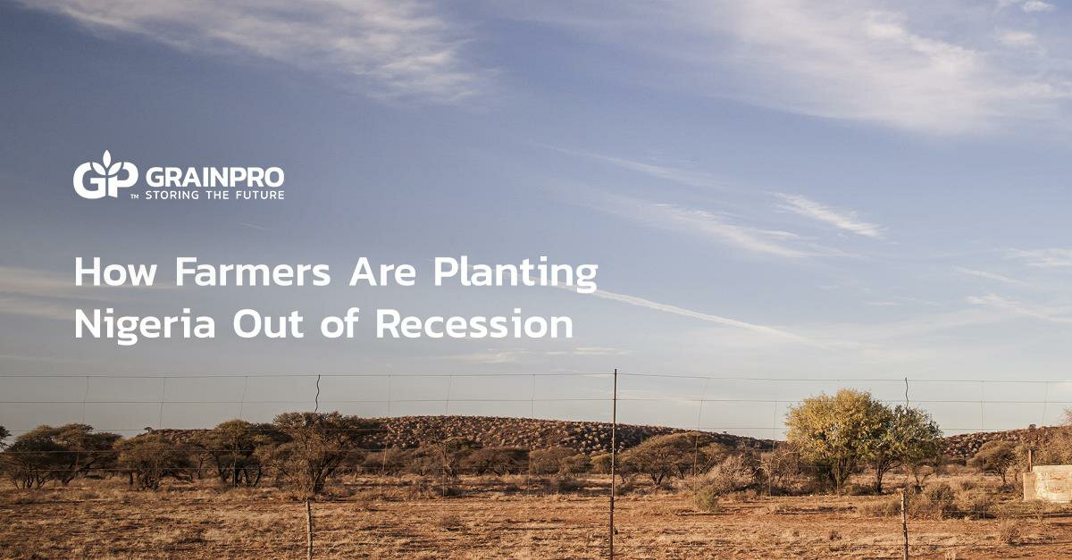 how farmers are planting Nigeria out of recession