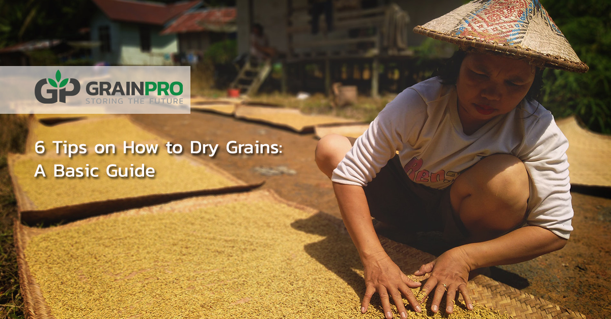 How to dry grains