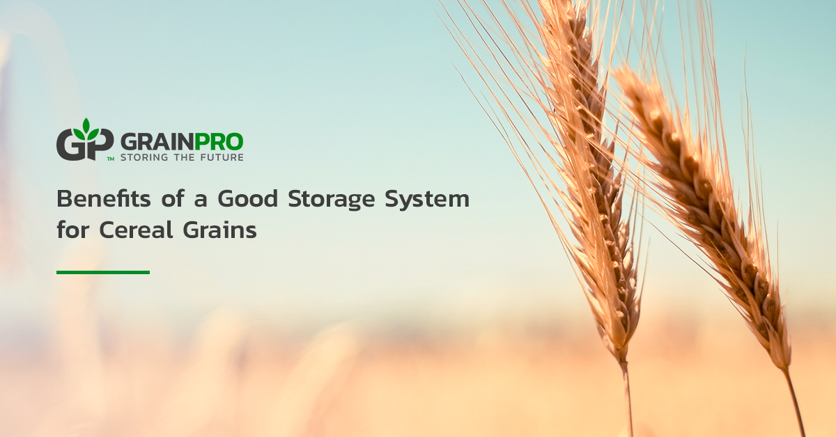 GP - Benefits of a Good Storage System for Cereal Grains