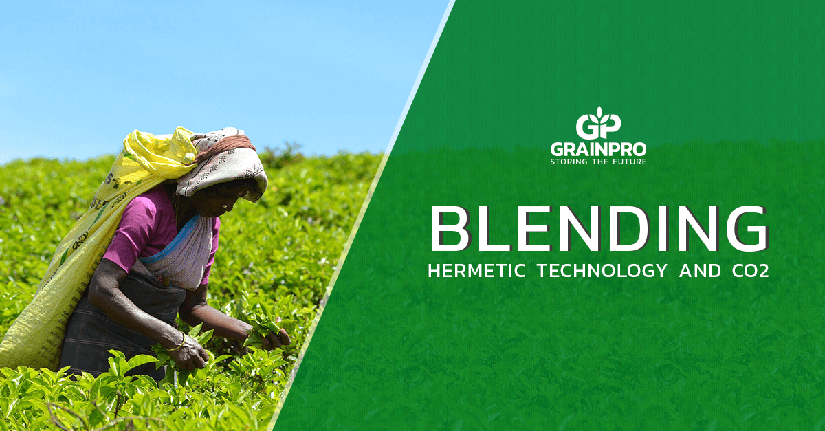 Woman using GrainPro Hermetic Technology and CO2