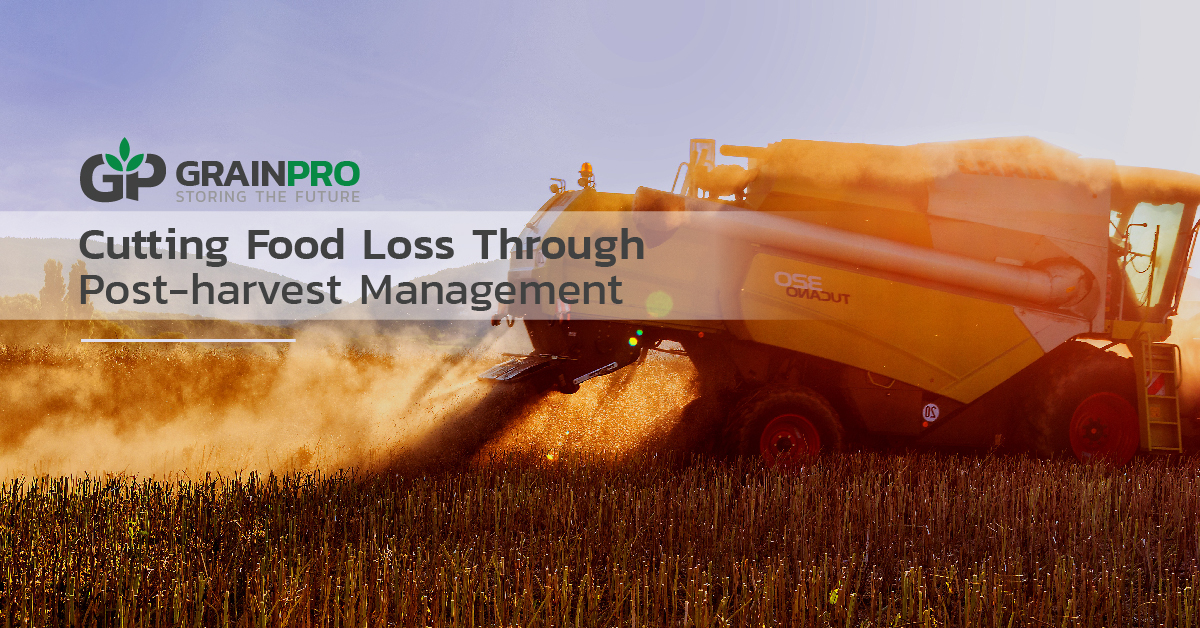 cutting food loss through post-harvest management