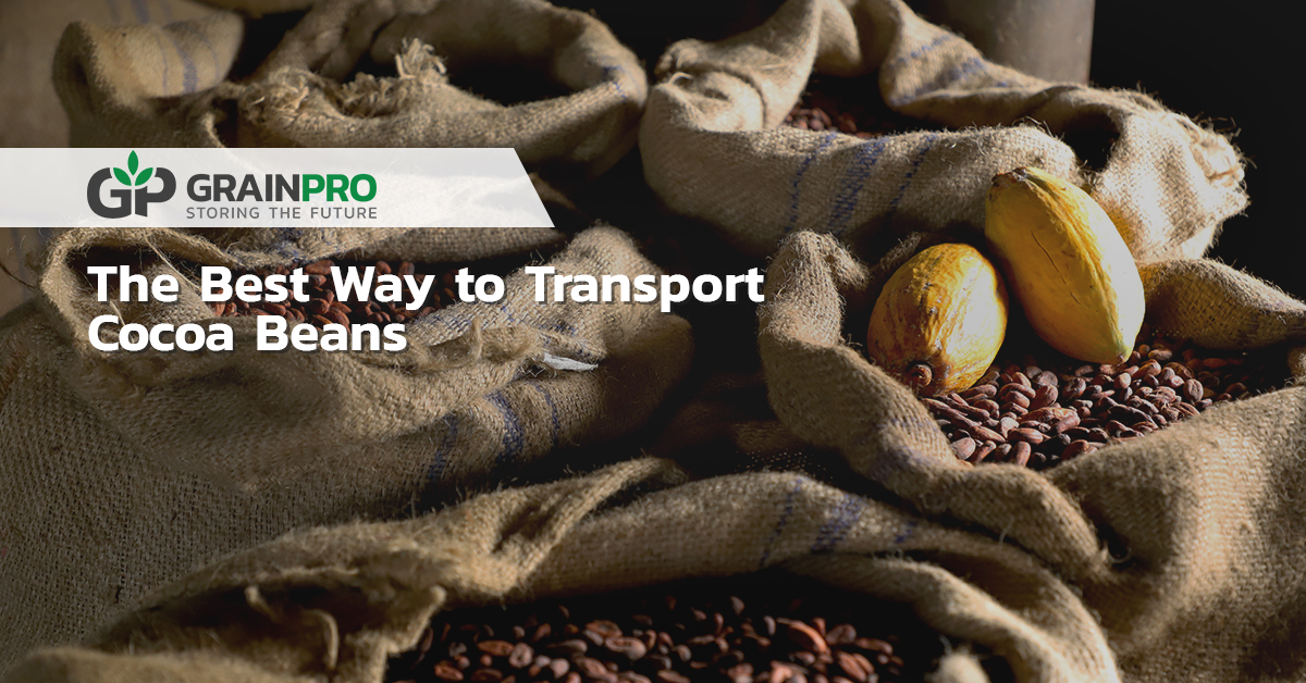 Transport cocoa beans